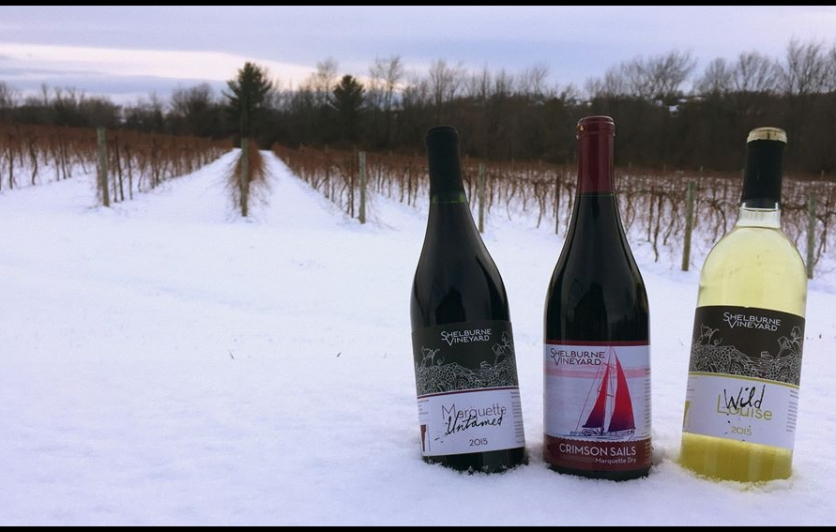 Shelburne Vineyard Winery and Tasting Room in Vermont