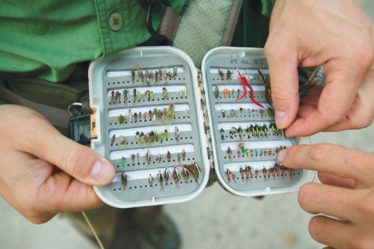 Different types of tackle
