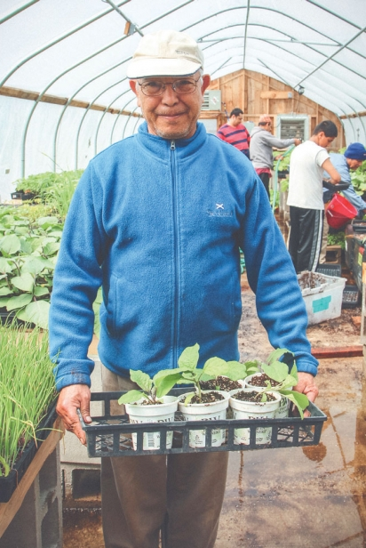 Saran Chhetri in the greenhouse.