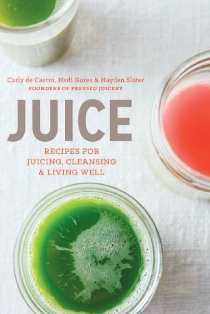Juice: Recipes for Juicing, Cleansing and Living Well by Carly de Castro, Hedi Gores and Hayden Slater
